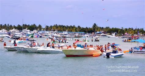 bluewater bay boat rentals party at the haulover sandbar in miami