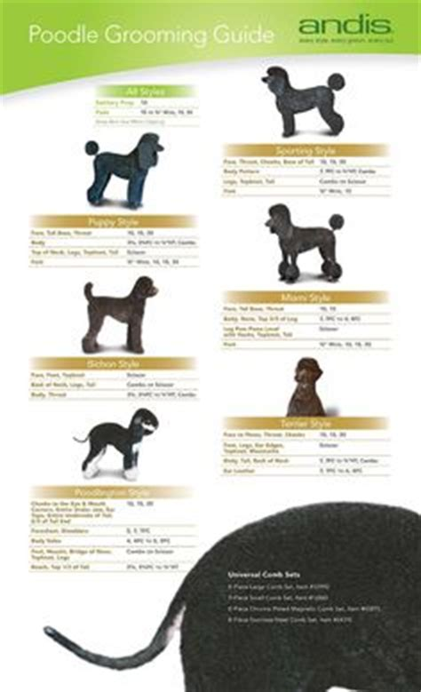 sizes of bladed for hair cuts repinned andis blades hair length chart become a pet