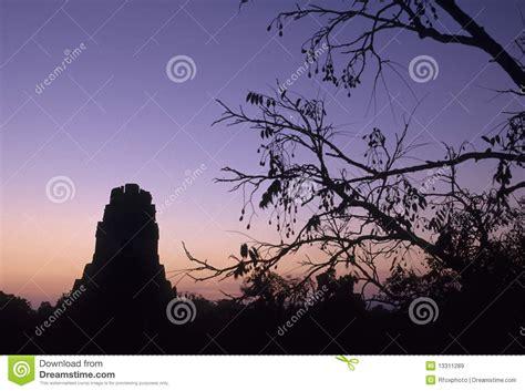 imagenes libres guatemala ruinas mayas tikal guatemala im 225 genes de archivo libres