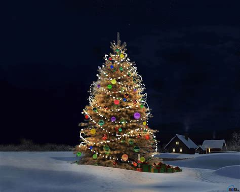 christmas tree desktop wallpapers wallpaper cave