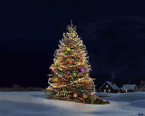 christmas tree desktop background wallpapersafari