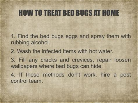 how to kill bed bugs with alcohol a short guide to bed bugs