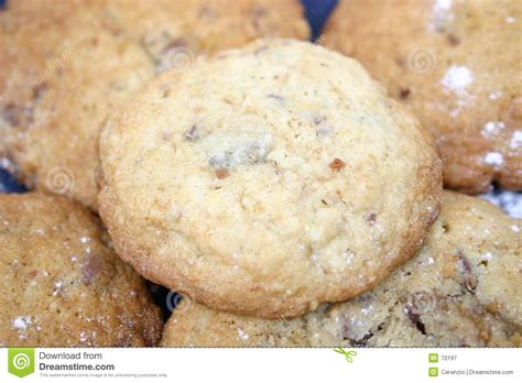 fresh cookies fresh cookies royalty free stock photography image 70197