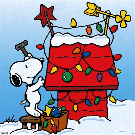 imagenes animadas snoopy navidad navidad snoopy imagui