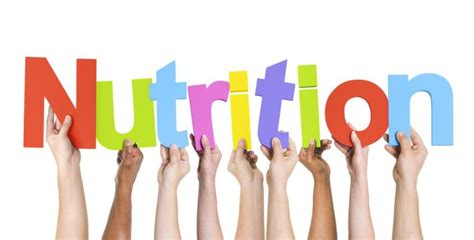 best nutrition top nutrition schools to study in the world 2018 2019