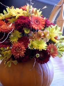 flower fall fall flower pictures beautiful flowers