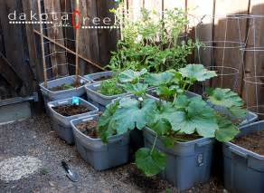 vegetables and container gardens