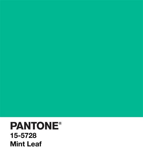 mint green pantone 110 best pantone images on pinterest