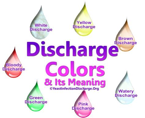 discharge colors yeast infection discharge color studiess