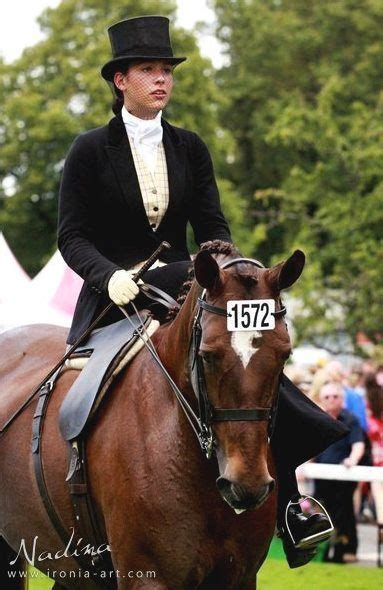 in esteem of the elegant horse equestrian inspired 17 best images about elegant equestriennes on pinterest