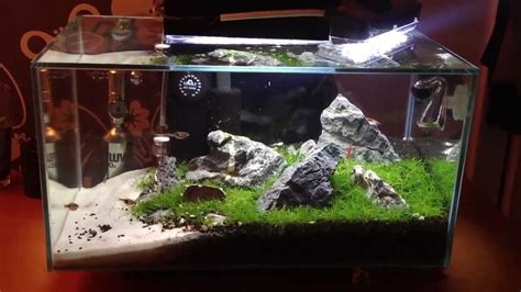 Fluval Edge Aquascape by Fluval Edge Aquarium Review Aquatic Mag