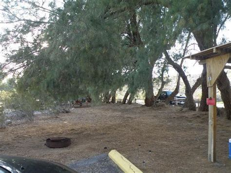 Tamarisk Grove Cabins by Csite Area Of Csite 8 At Tamarisk Grove Picture Of