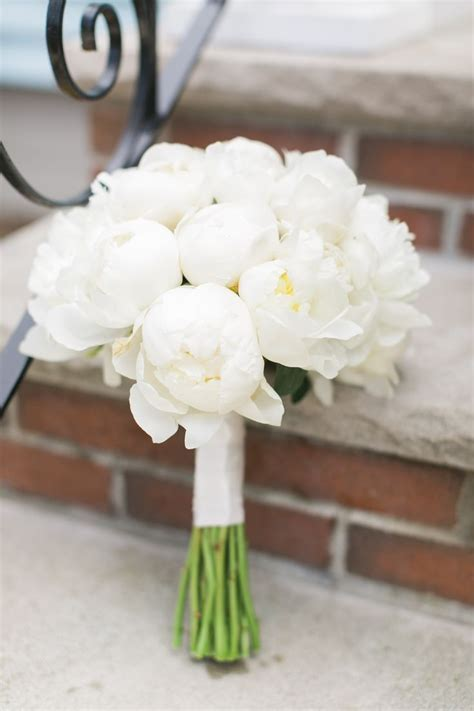 25  best ideas about White peonies on Pinterest   White
