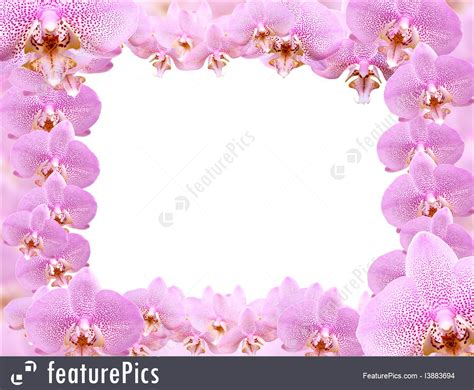 orchideen gestell orchid frame image