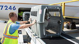 petsafe pet transport shipping
