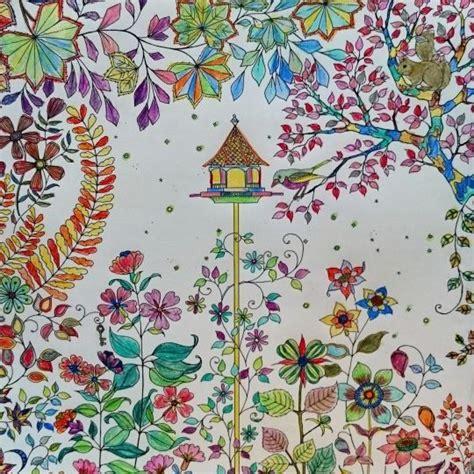 secret garden colouring book instagram 46 best images about secret garden on secret