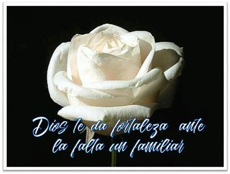 imagenes de luto blancas mira estas 5 im 225 genes de rosas blancas con frases de luto