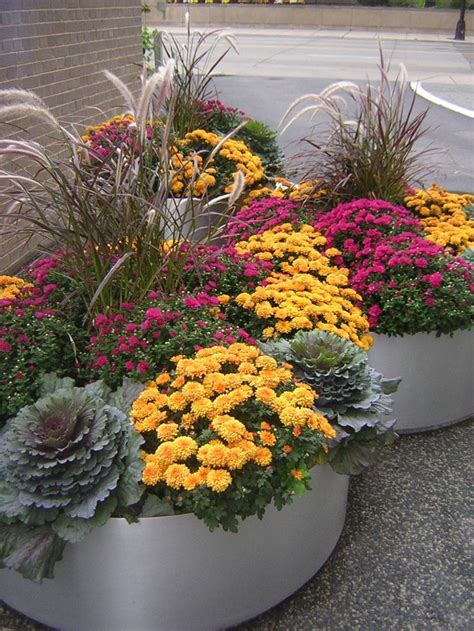 fall container gardens fabulous fall flower containers
