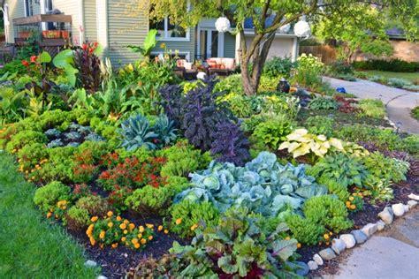 Create A No Till Garden And Retire Your Tiller Forever No Till Vegetable Garden