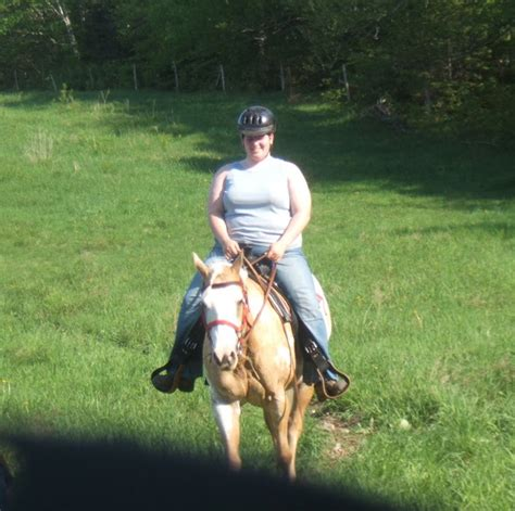 how much weight can a horse carry comfortably horse snob overweight riders and horse owners