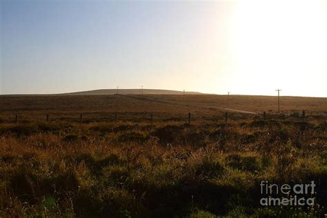 Landscape Photography Bay Area Landscape At Point Reyes California 7d9958 Photograph By