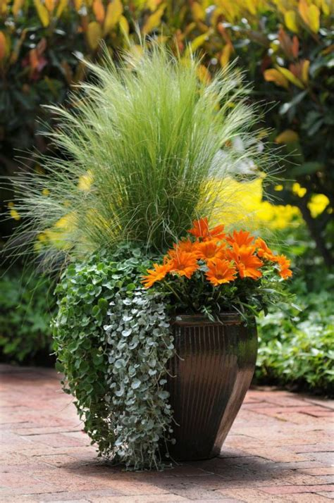 planters for container gardens 3 types of container garden styles which one are you