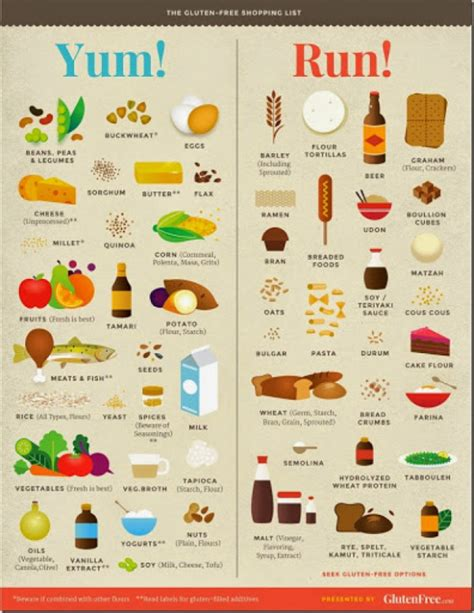 what foods should dogs not eat foods should not eat list foodfash wyhbtv44