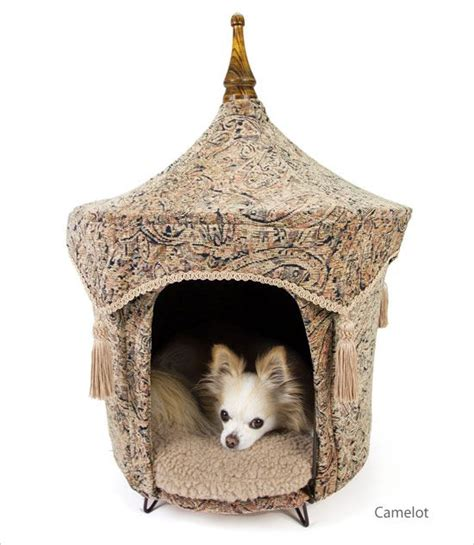 dog tent bed pet tent dog bed baby chloe baby coco sasha pinterest