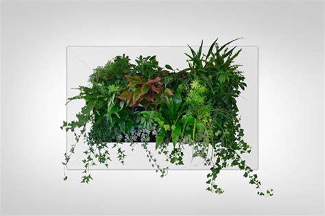 Pflanzenbild Selber Machen by Gr 252 Ne Wand Raffinierter Blickfang F 252 R Die Wohnung Bauen De