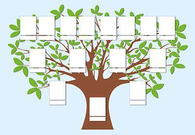 árbol genealógico heráldica familiar qué es un árbol