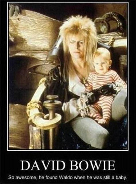 David Bowie Labyrinth Meme - david bowie meme redhouse rocks pinterest classic