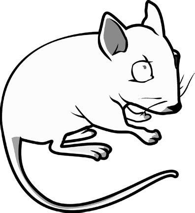 cartoon mouse coloring page 12 imagens de ratos para imprimir e colorir atividades