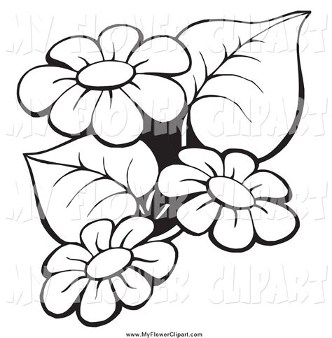 black and white flower clip 15 black and white outline pictures of flowers pictures