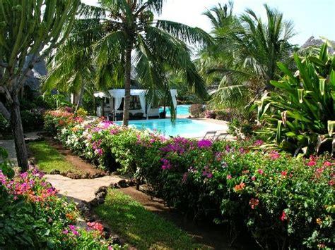 dorado cottage kenya hotel dorado cottage offerte last second last minute