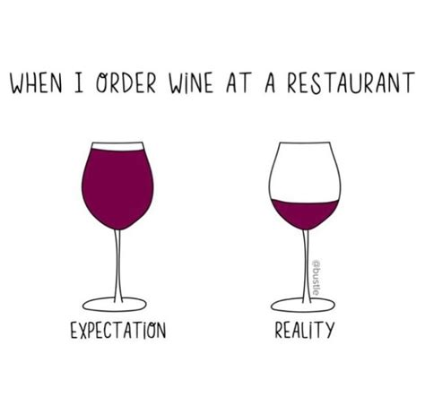 Wine Glass Meme - 231 best images about essential wine quotes on