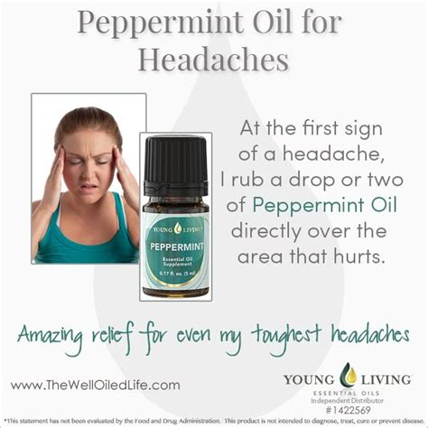 Cilantro Detox Headache by 17 Best Images About Peppermint On Peppermint