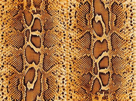 snake skin print on behance snake skin by mildak deviantart com animal prints