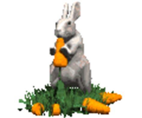 imagenes gif zanahorias gifs animados de zanahorias animaciones de zanahorias