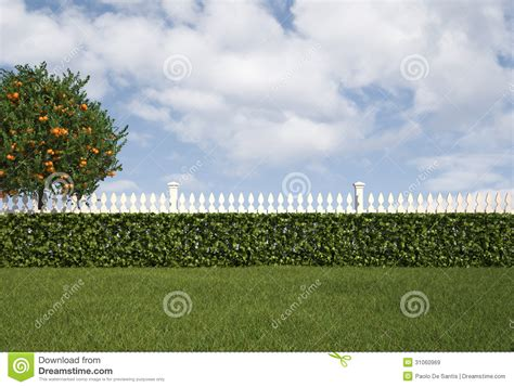 jardines setos imágenes jard 237 n con la cerca y el seto im 225 genes de archivo libres
