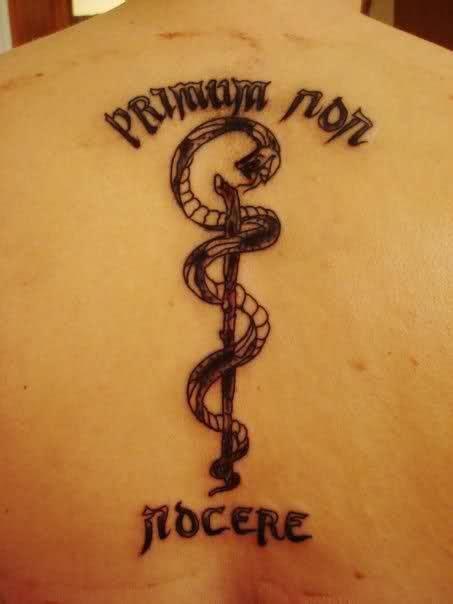 asclepius tattoo designs quot primum non nocere quot do no harm