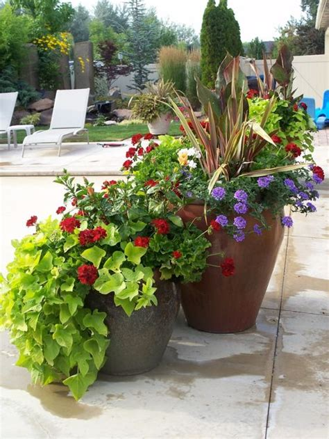 Summer Planters Ideas by Summer Container Plants Houzz