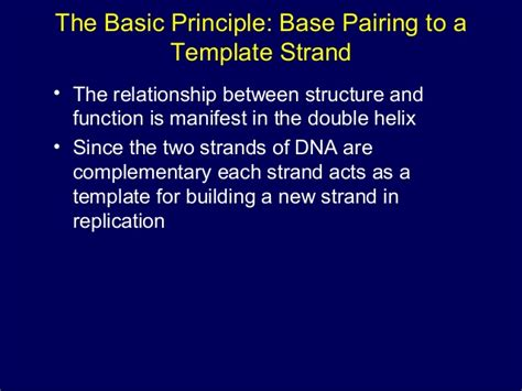 what acts as the template in dna replication dna structure replication transcription translation