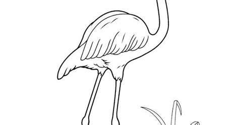 skippyjon jones coloring pages google search coloring
