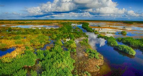 xixi national wetland park  wonderful wetlands mnn
