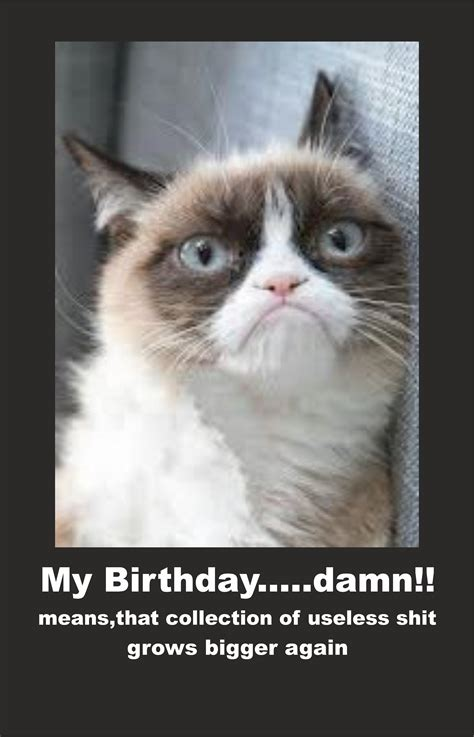 Grumpy Cat Birthday Meme - image 614122 grumpy cat know your meme