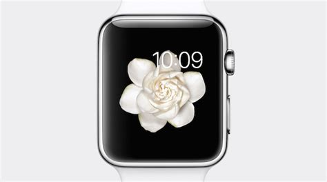 animated wallpaper for apple watch iphone 6s to feature gorgeous animated wallpapers