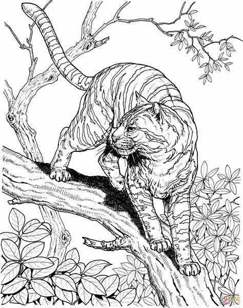 Realistic Jungle Animal Coloring Pages by Jungle Animals Coloring Pages Free Coloring Home