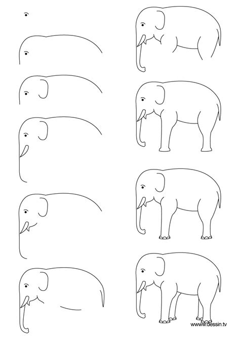 how to draw a doodle elephant drawing elephant