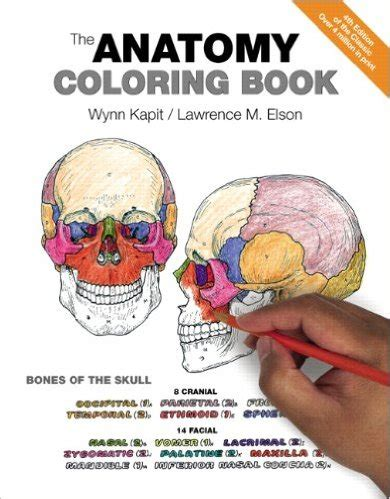anatomy coloring book for nurses 22 best coloring books for nurses they re a lot of