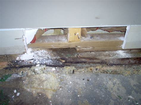 ripoff report tri state basement technologies complaint